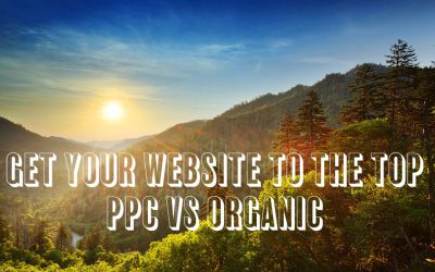 Get Your Website To The Top – PPC vs Organic